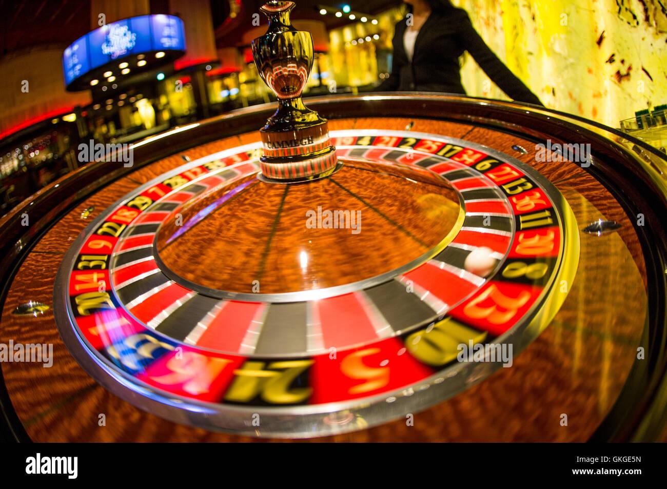 Live Casino - 316290