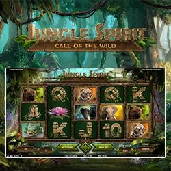 Slots Bonus spielen - 14727
