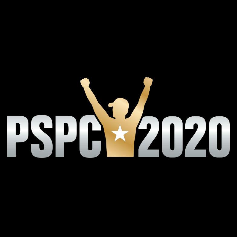 Deutsche Pokermeisterschaft 2020 - 434146