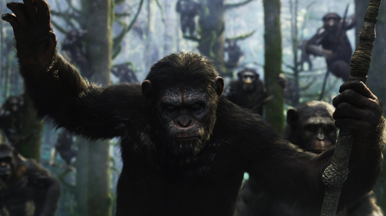 Planet der Affen - 719986